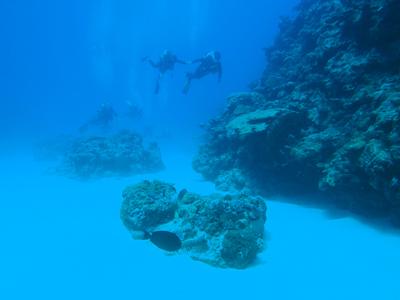 La plongée à Rodrigues avec Jacky Diving