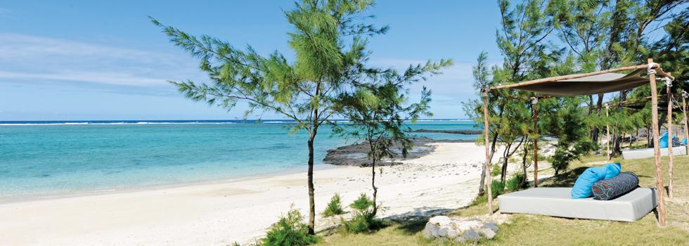 Détente sur la olage du Tekoma à Rodrigues