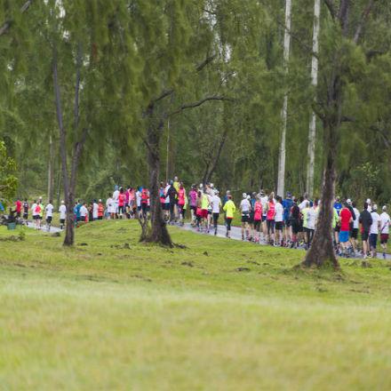 La 9e édition du Marathon de Maurice, la course sur route par excellence, revient ce dimanche.
